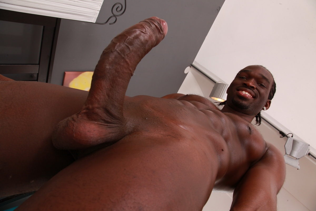 Cock white young black